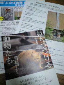 桂仙のブログ-120313_2306~0001.jpg