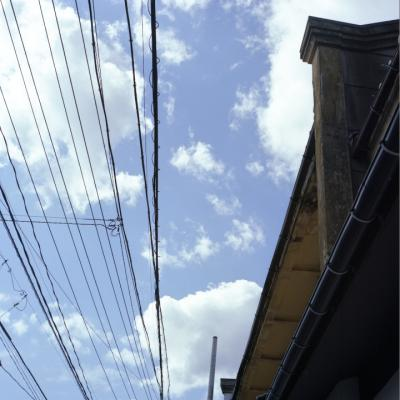 2010_09_24_Rolleiflex28F__9.jpg