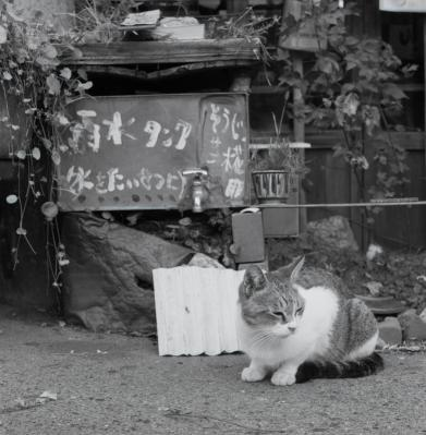20111104_Onomichi_Rolleiflex28F_Presto_1.jpg