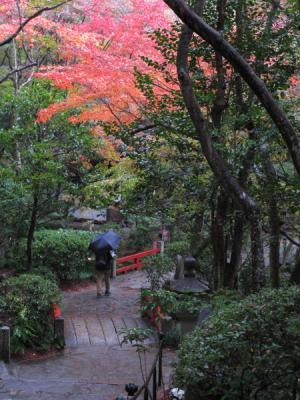 2011_11_23_Mitaki0006.jpg
