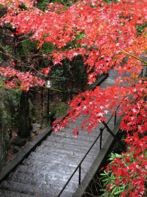 2011_11_23_Mitaki0020.jpg