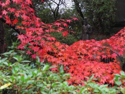 2011_11_23_Mitaki0036.jpg