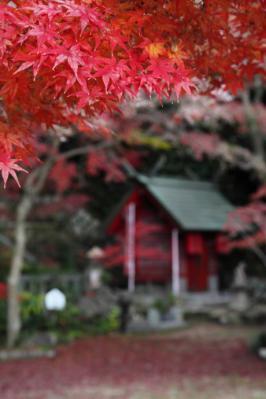 2011_12_04_Fudoin0004.jpg