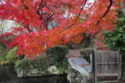 2011_12_04_Fudoin0008.jpg