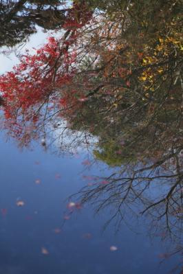 2011_12_04_Fudoin0012.jpg