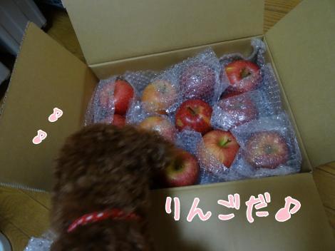 りんごが届いたよ