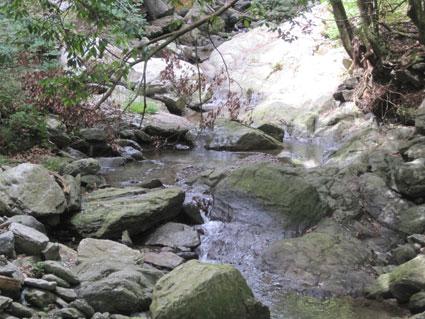 横峰寺12