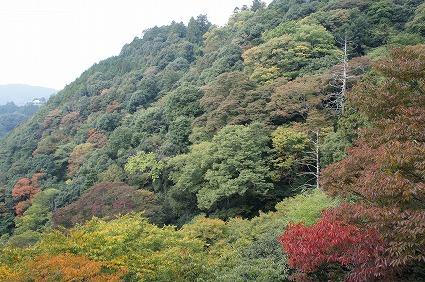 箸蔵寺01