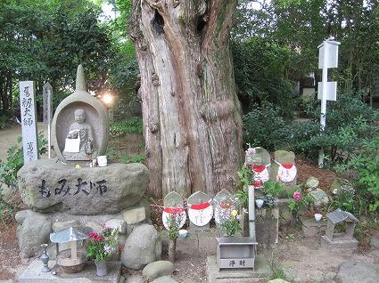 浄瑠璃寺02