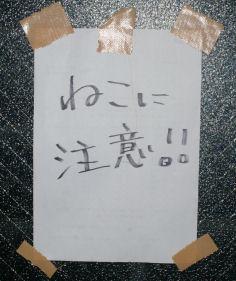 IMGP5694-m.jpg