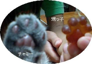 20100822gumi2