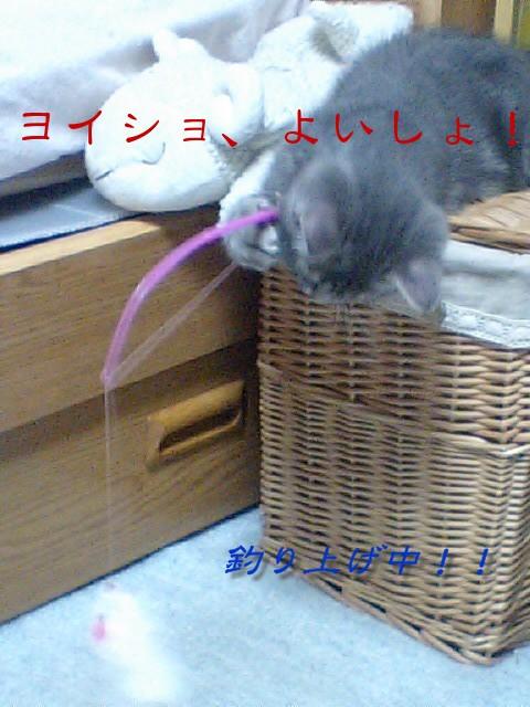 20100906blog1