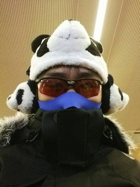 panda2.jpeg