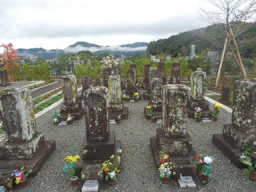 坂本家墓所_1