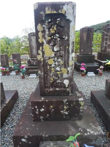 坂本乙女墓