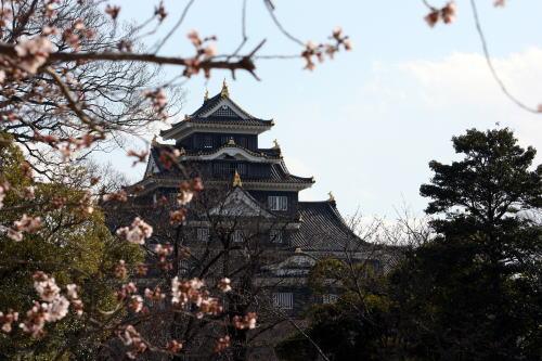 岡山城 後楽園より見た