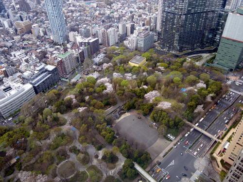 都庁展望台から見た新宿中央公園