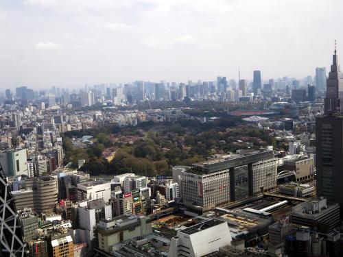 新宿センタービル53階からの新宿御苑