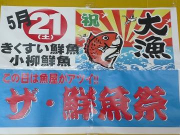 2011_0519005.jpg