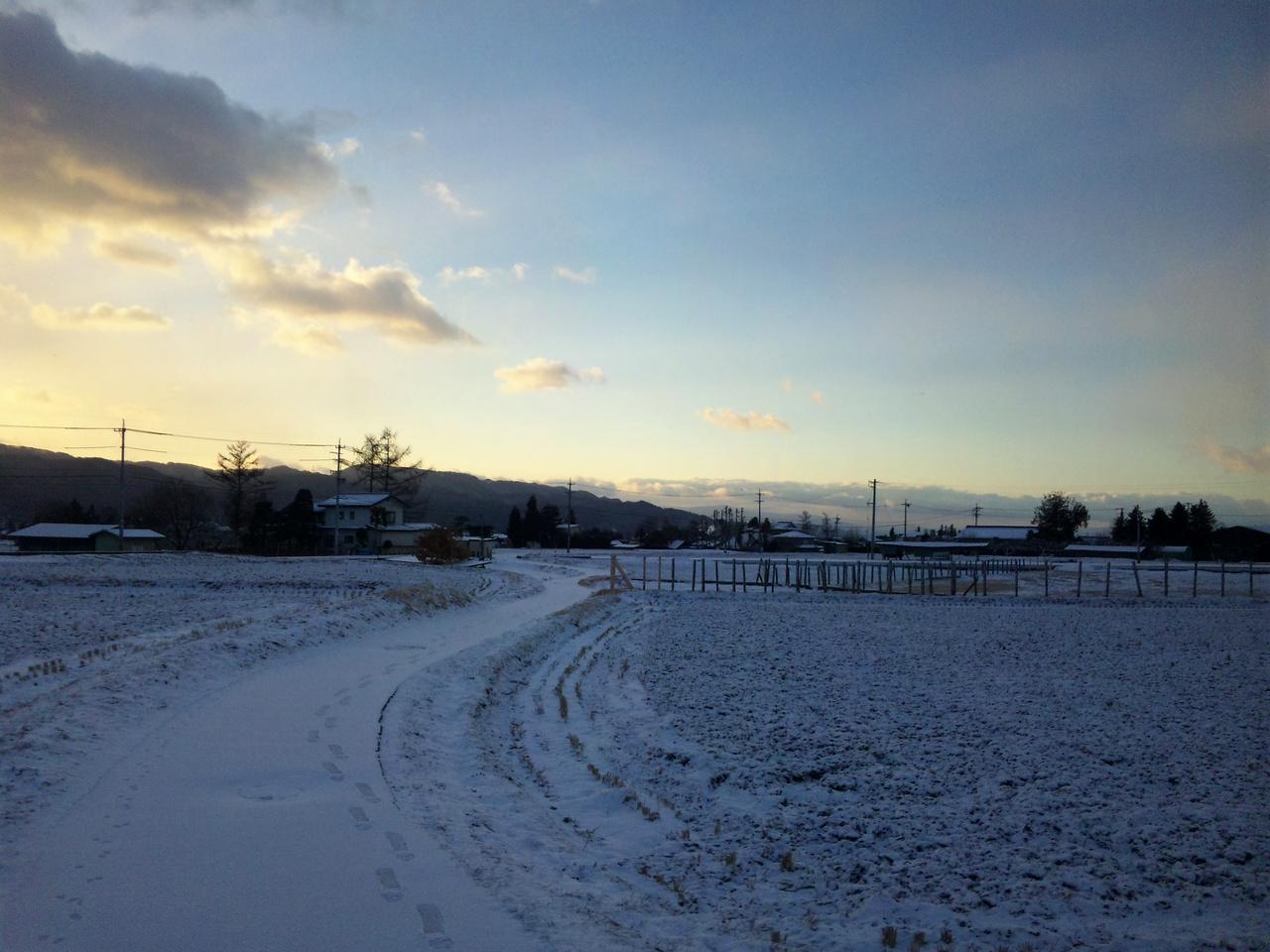 日の出直前の田圃道