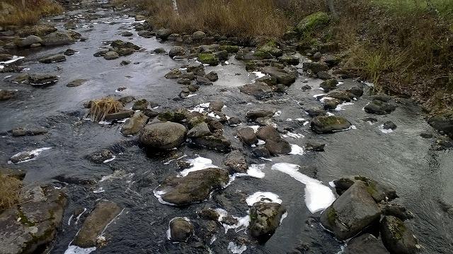 凍りかけの川