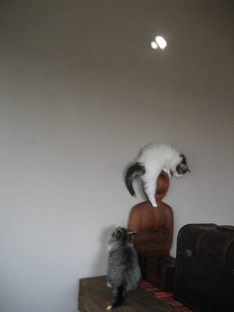 壁飛び 012