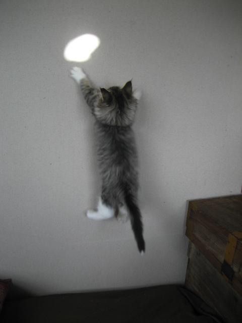 壁飛び 008