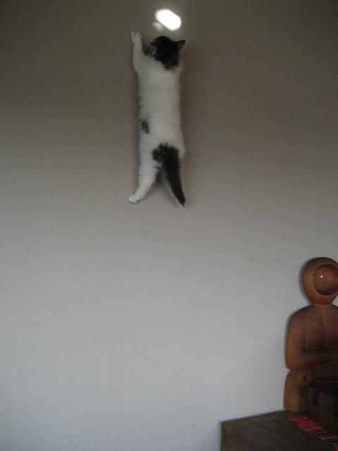 壁飛び 010