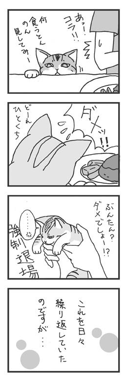 vol_0001_01_web.jpg