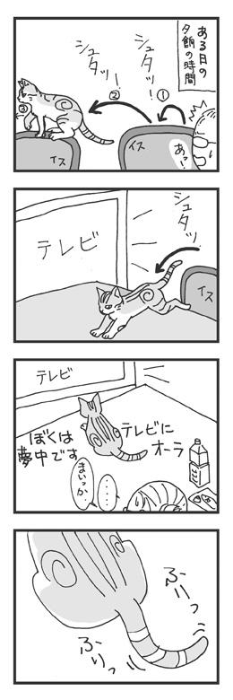 vol_0001_02_web.jpg