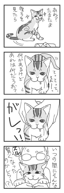 vol_0001_04_web.jpg