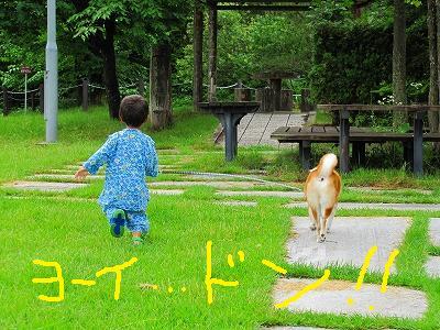 s-IMG_0332_20100721180446.jpg