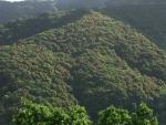 3.新緑の丘-01D 05