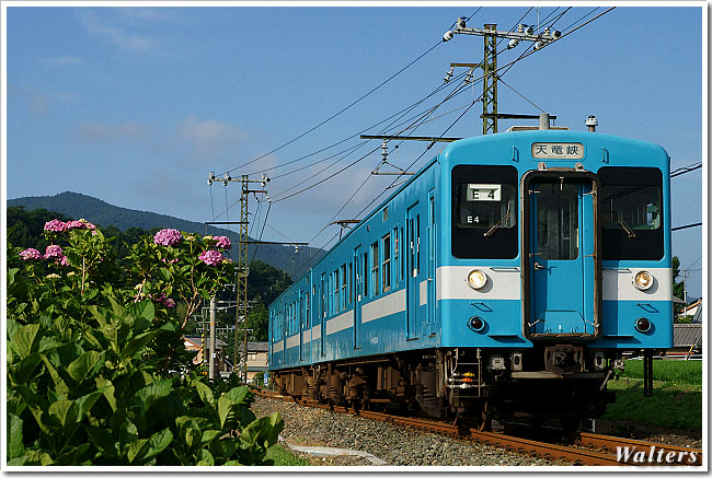 DSC00295.jpg
