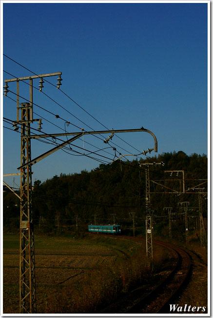 DSC06446A.jpg