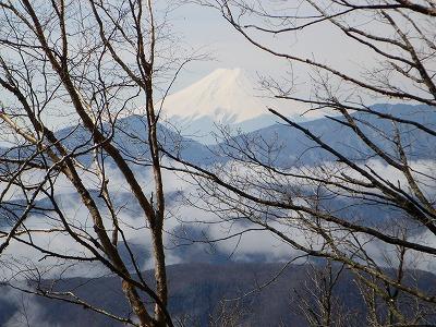 富士山だよその1