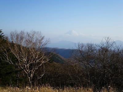 川胡桃沢ノ頭からの富士山