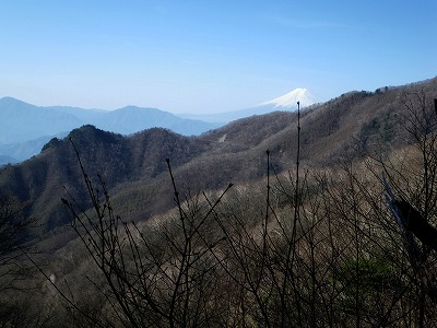 姥子山と富士山