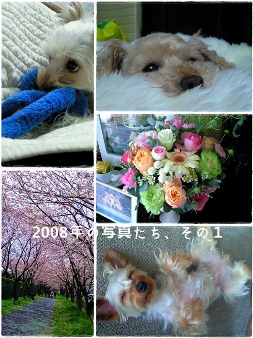 keitai2008_1.jpg