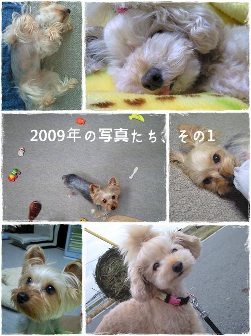 keitai2009_1.jpg