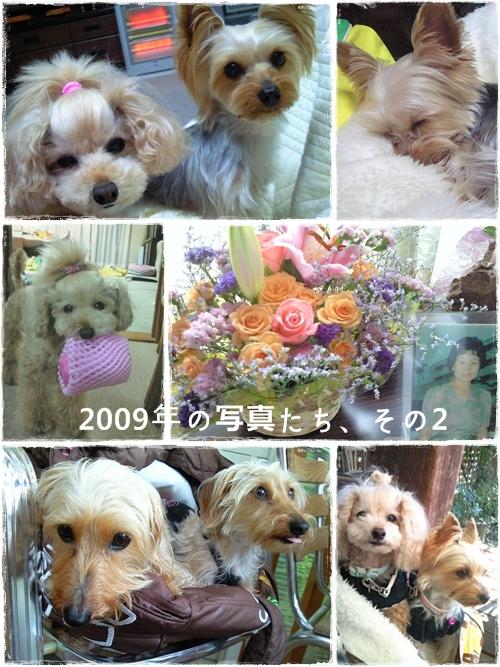 keitai2009_2.jpg