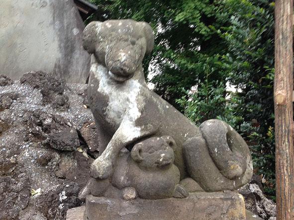shiboguchi-6