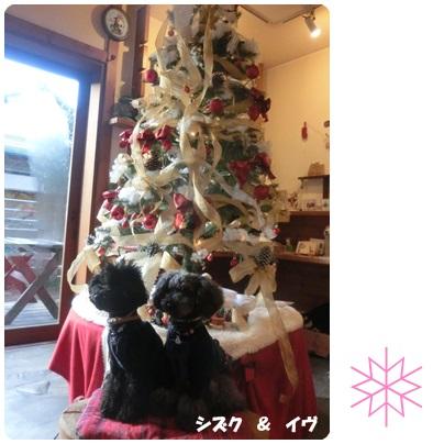 2014-12-25.jpg