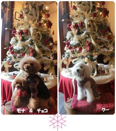 2014-12-26.jpg