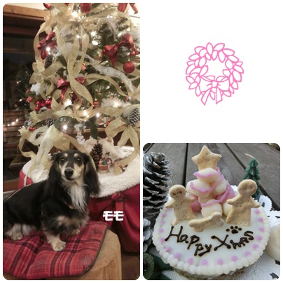 2014-12-38-1.jpg