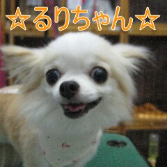 IMG_8080.jpg