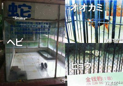 中華人民共和国河南省ラクガ市動物園の謎の動物たち