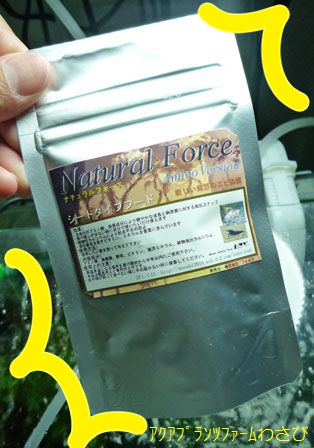 ナチュラルフォース-アミノ2