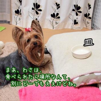 2_20110525192334.jpg