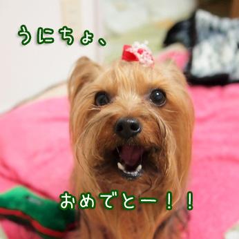 3_20110523202300.jpg